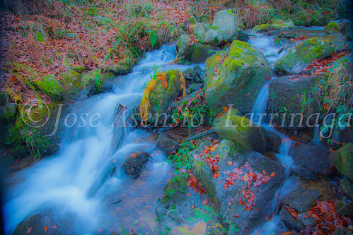 Parque Natural de Gorbeia   #DePaseoConLarri #Flickr      -2747
