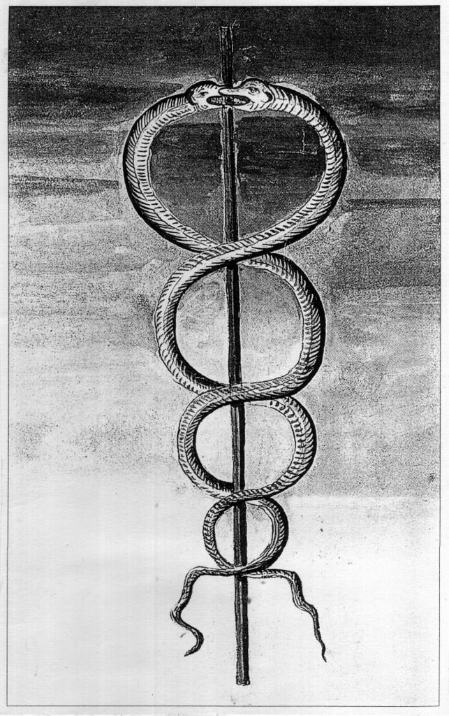 Doc435620 Two Snakes And The Staff Of Mercury Caduceus Flickr