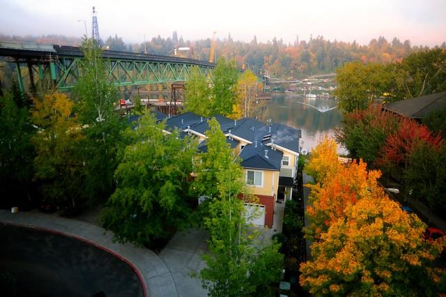 Autumn in Portland