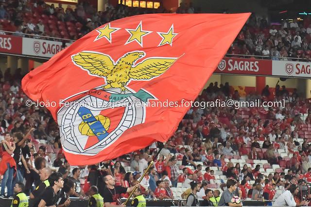 Benfica-P.Ferreira (2016/2017)
