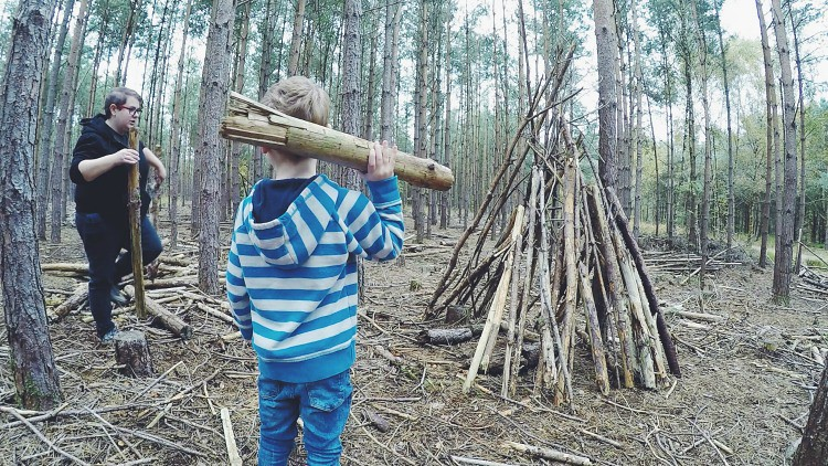moors valley den building