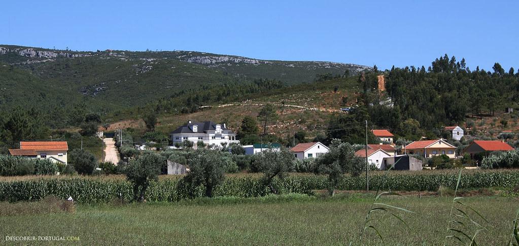 Paysage de collines et d'oliviers