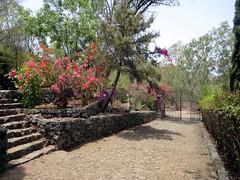 Jardin botanique national Grandvaux Barbosa