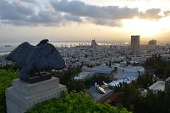 Haifa at dawn
