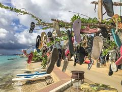 Bonaire, Karibik