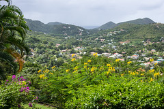 Stony Hill, St Lucia