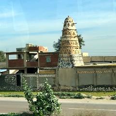 Égypte, Alexandrie, Route M75, Pigeonnier
