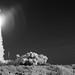 Mars 2020 Perseverance Launch (NHQ202007300024)