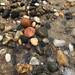 Herring Cove Beach rocks
