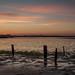 Dawn River Blyth Suffolk