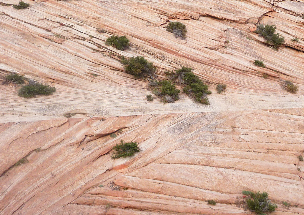 Sandstone Cross Bedding The Cross Bedding Found In The