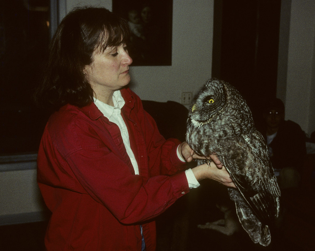 Laura holding a Great Gray Owl
