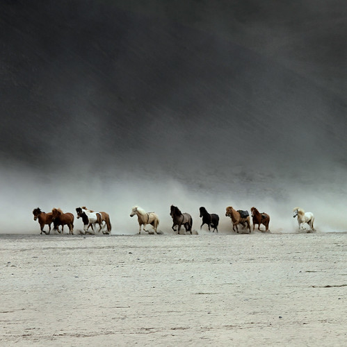 1 On a hot and dusty day. | by Sverrir Thorolfsson