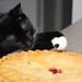 Take The Pie