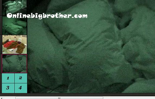 BB13-C4-8-3-2011-7_47_01.jpg | by onlinebigbrother.com