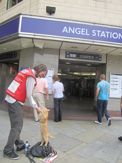 Bob the Cat outside Angel Tube | by Annie Mole