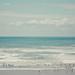 the ocean's calling