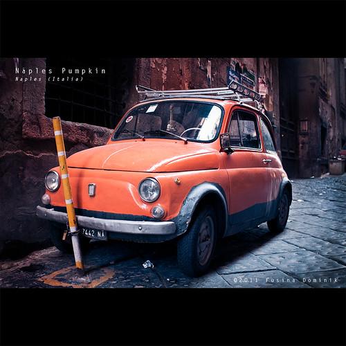 Napolitan Pumpkin | Naples (Italia)
