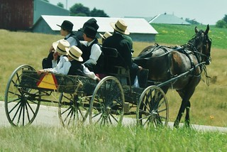 Amish Buggy Ride | by chumlee10