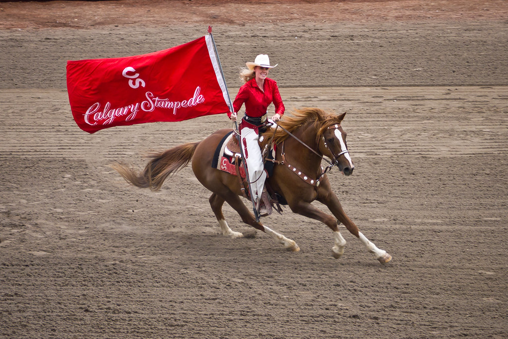 Calgary Stampede Flag Rider The Flag Rider At The