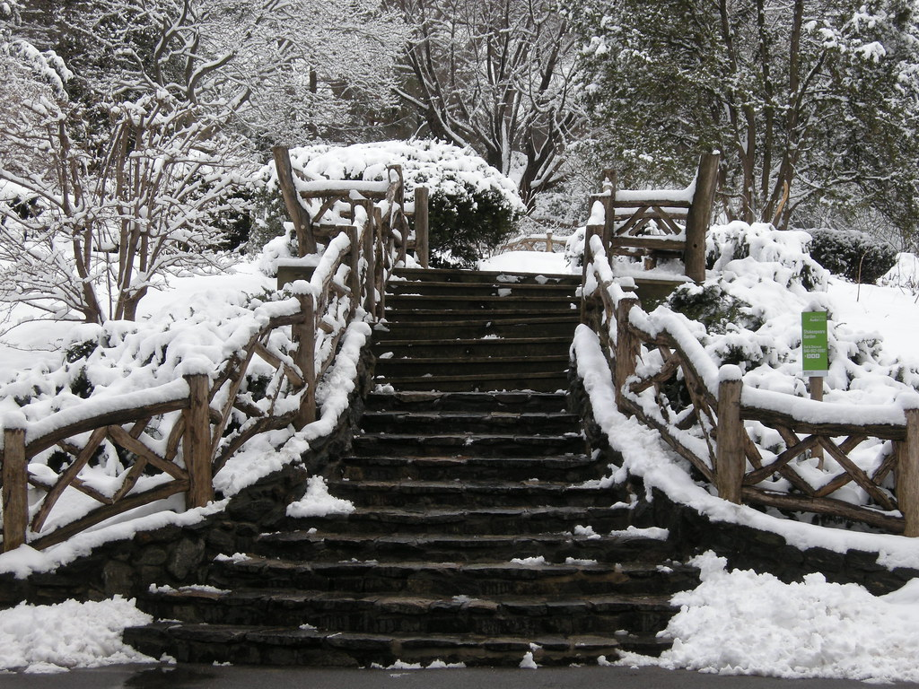snow in central park the shakespeare garden by nellies78 - Shakespeare Garden Central Park