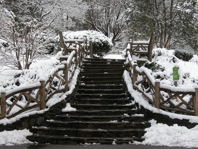 Snow In Central Park The Shakespeare Garden Flickr Photo Sharing