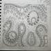 'Terrain' the original sketch