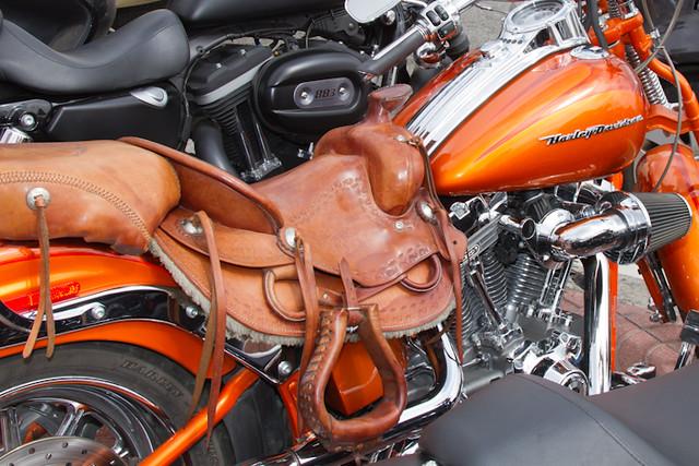 Un silla de montar para demasiados caballos flickr for Sillas para caballos