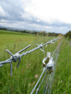 Barbed Wire Detail #8 | by formerly_gildermershina