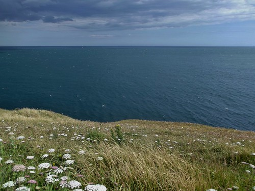 The Coastal Path at Durlston Country Park and National Nature Reserve in Swanage, Dorset, England - June 2011