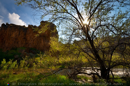 The serpent and the sun star. | by Douglas Remington - Ethereal Light® Photography