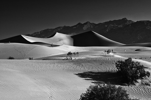 Mesquite sand dune, Death Valley NP | by Jiqing Fan