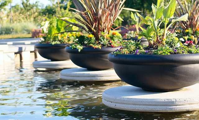 Floating planters flickr photo sharing for Floating plant pots