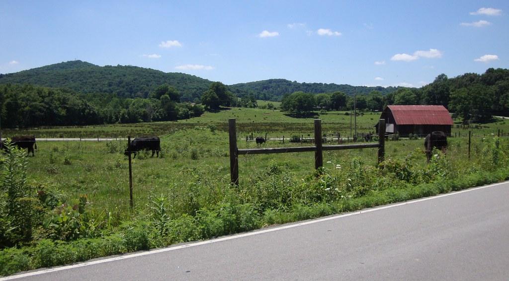 Middle Tennessee Landscape Pickett Tennessee Pickett