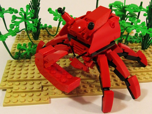 Shubby the Crab-echa | by Wyrk Wyze