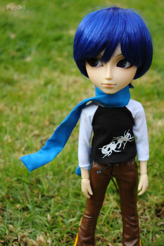 Kaito | Taeyang Kaito, my friend Amaterasu's new boy: https://www.flickr.com/photos/pyochi/6208085096