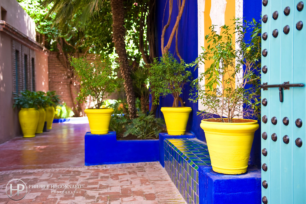 le jardin majorelle de marrakech au maroc philippe hugonn flickr. Black Bedroom Furniture Sets. Home Design Ideas