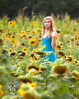 Yet More Sunflower Field Portraits | by G. H. Holt Photography