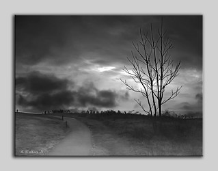 The Last Dawn - Grayscale | by starg82343