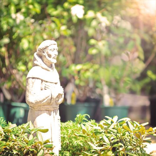 Saint Joseph White Flower Farm Morris Ct Carla Kurt Flickr