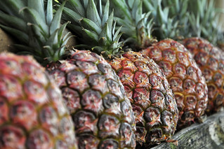 NP pineapple | by CIAT International Center for Tropical Agriculture