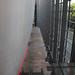 Darwin centre 2