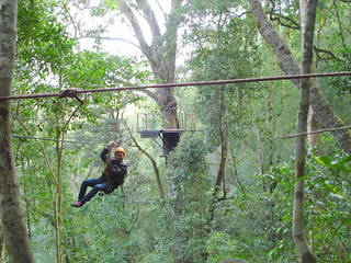 Canopy Tour in the Tsitsikamma Forest | by barbourians