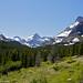 Glacier National Park #53