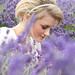 UKWP Lavender Shoot (162 of 217)