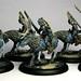Legion Raptors