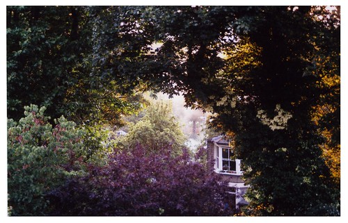 The View from my bedroom window, June 2011 | by Laura Hodges