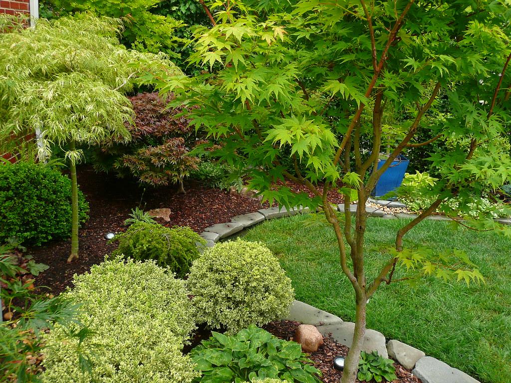 Image Result For Japanese Garden Design