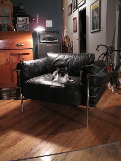 Le corbusier fauteuil grand confort grand mod le flickr phot - Fauteuil design le corbusier ...