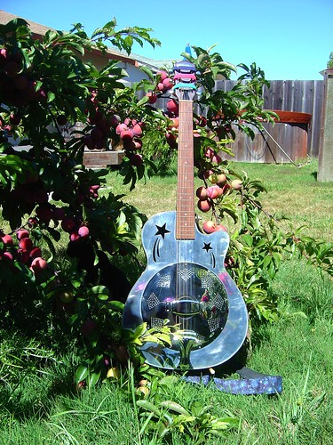 "My Liberty ""shooting stars"" resonator guitar out by the plum tree 